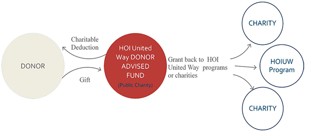 Donor Advised Fund pie flow chart