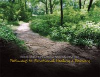 Rebuilding Hope after a Natural Disaster: Pathways to Emotional Healing and Recovery